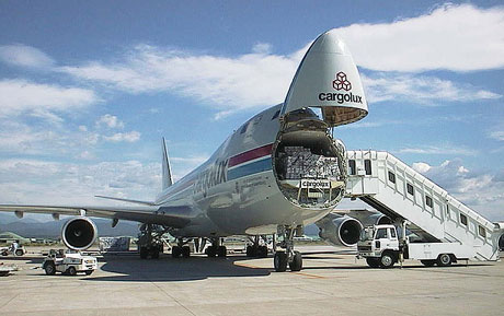 11094526-Cargo